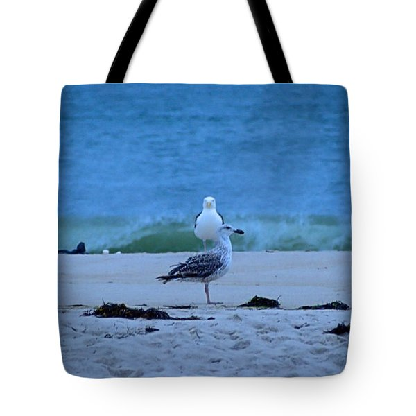 Beach Birds Tote Bag