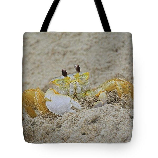Beach Crab In Sand Tote Bag by Randy Steele