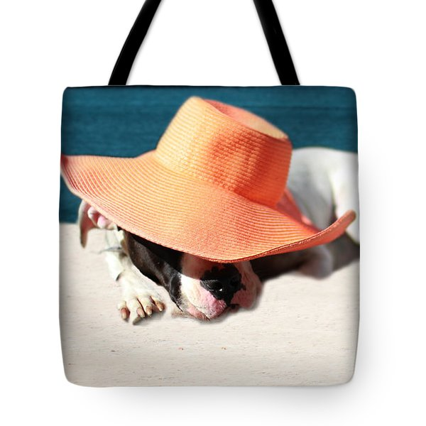 Tote Bag featuring the photograph Beach Day For Bubba by Shelley Neff