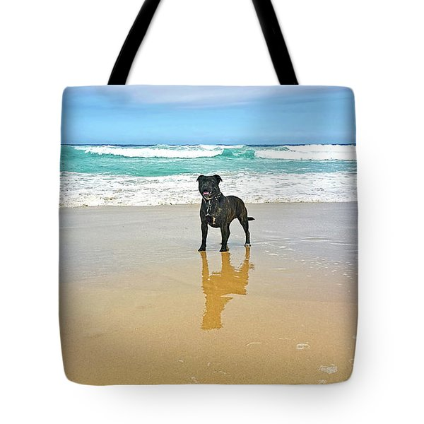 Tote Bag featuring the photograph Beach Dog And Reflection By Kaye Menner by Kaye Menner