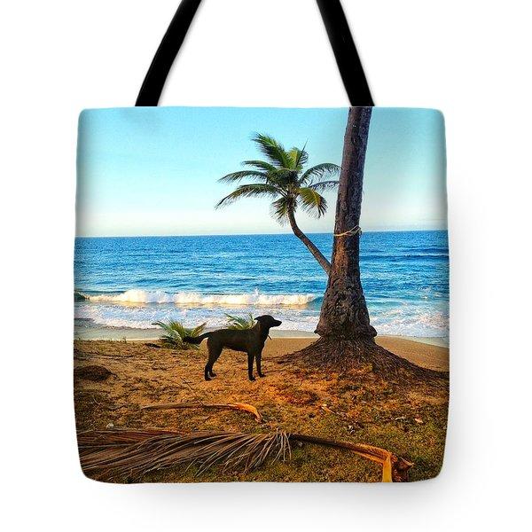 Beach Dog  Tote Bag