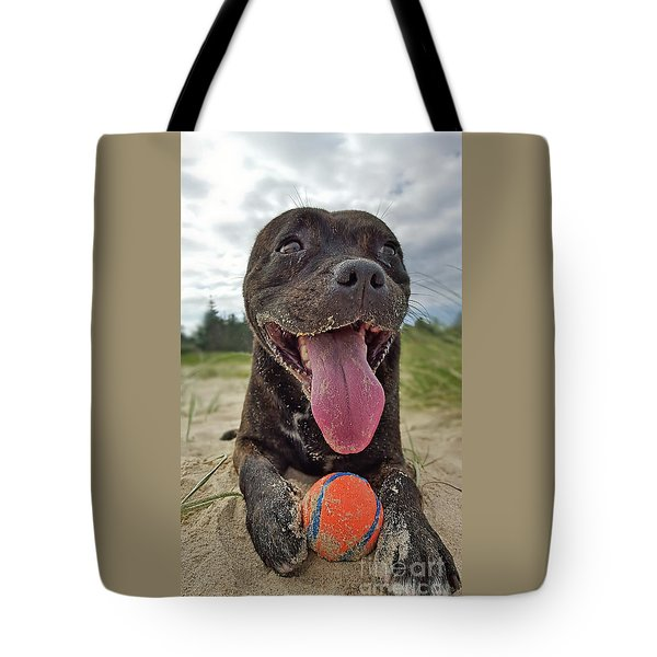Tote Bag featuring the photograph Beach Dog - More Play? By Kaye Menner by Kaye Menner