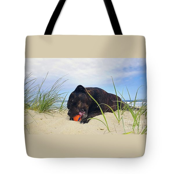 Tote Bag featuring the photograph Beach Dog - Rest Time By Kaye Menner by Kaye Menner