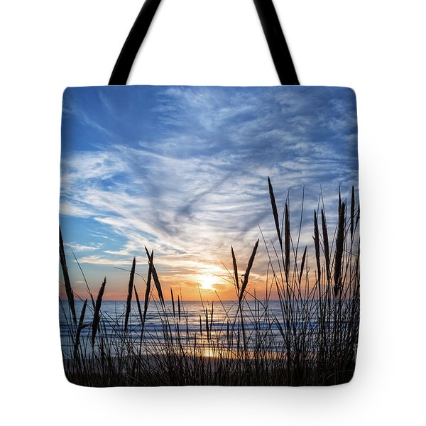 Tote Bag featuring the photograph Beach Grass by Delphimages Photo Creations