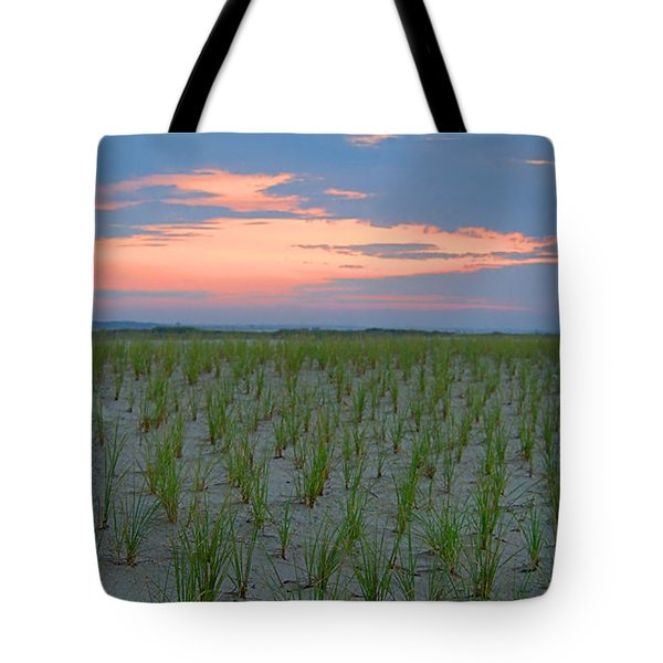 Beach Grass Farm Tote Bag