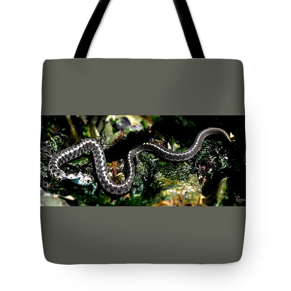 Beach Guardian Tote Bag