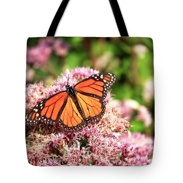 Tote Bag featuring the photograph Beach Haven Butterfly by John Rizzuto