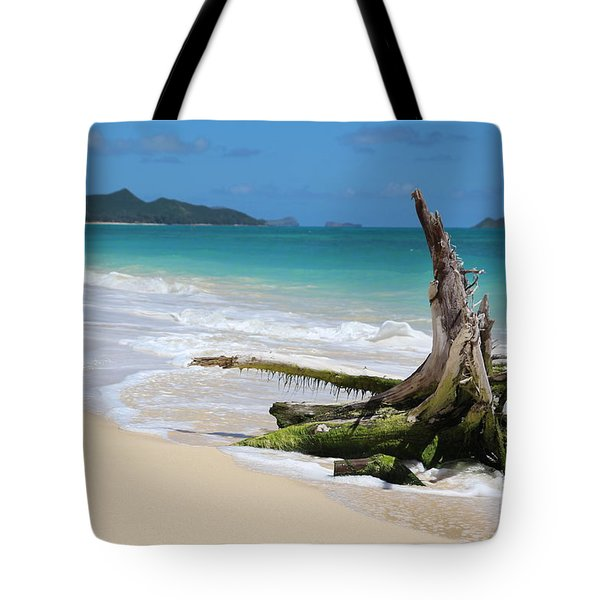Beach In Hawaii Tote Bag by Anthony Jones