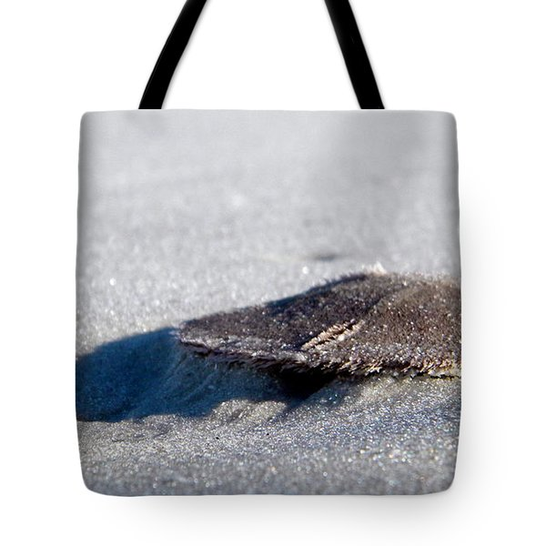 Beach Money Tote Bag