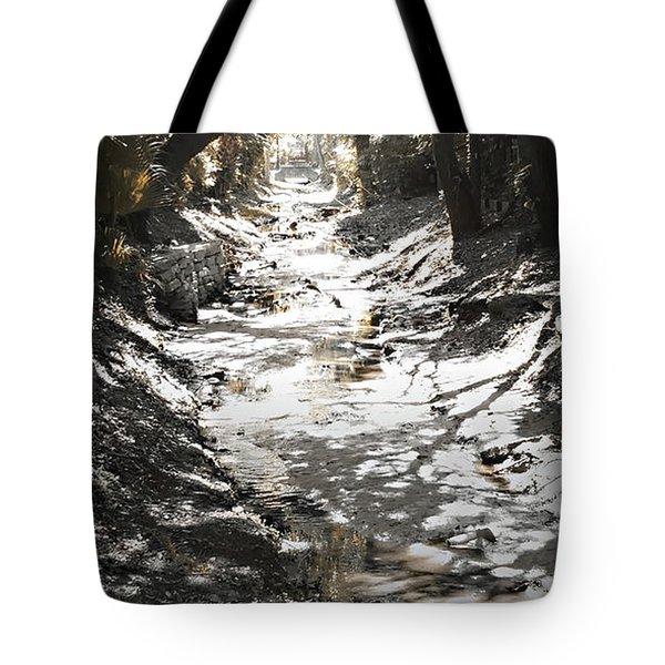 Beach Park Storm Drain Tote Bag
