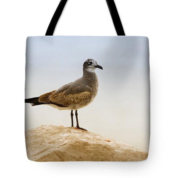 Tote Bag featuring the photograph Beach Pose by Deborah Benoit