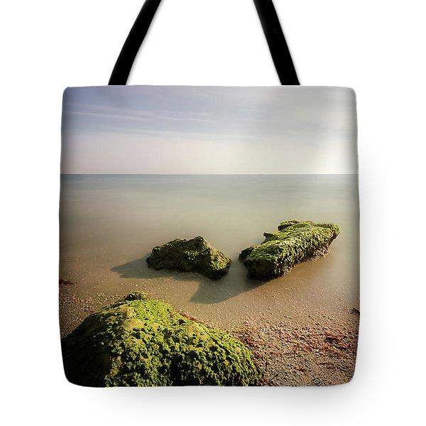 Beach Tote Bag by RC Pics