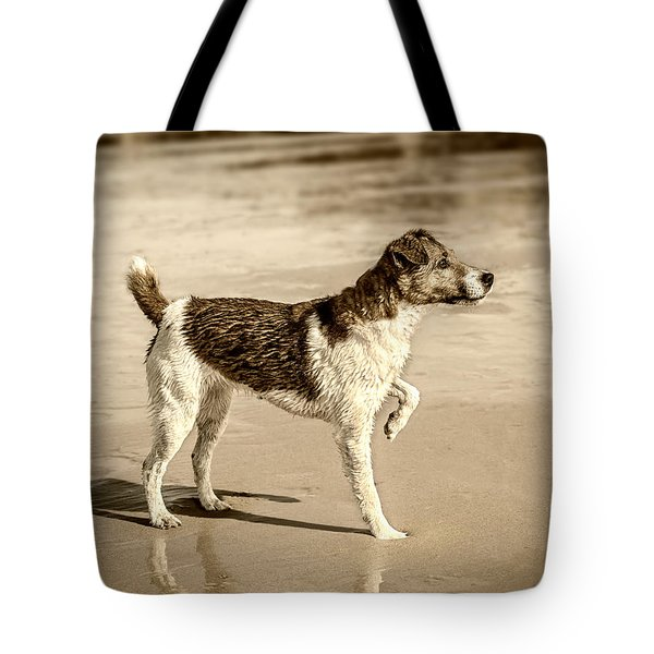 Beach Ready Tote Bag