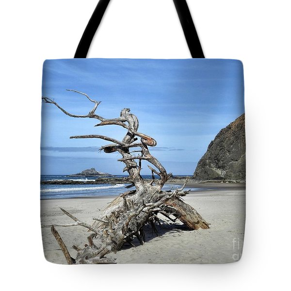 Tote Bag featuring the photograph Beach Sculpture by Peggy Hughes