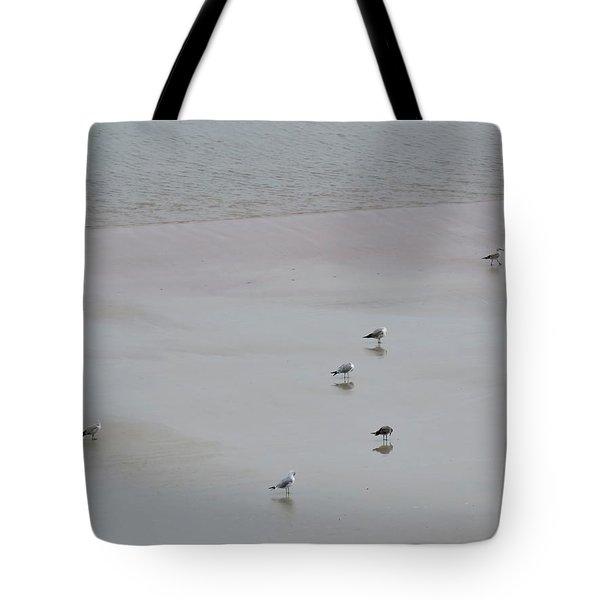 Beach Seagulls Tote Bag