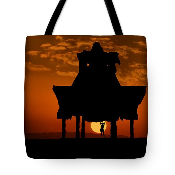 Tote Bag featuring the photograph Beach Shelter At Sunset by Joe Bonita