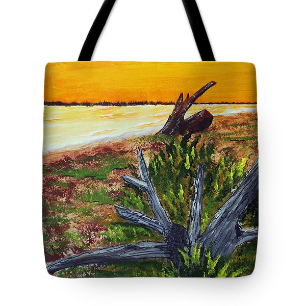 Beach Sunset Tote Bag by Jack G  Brauer