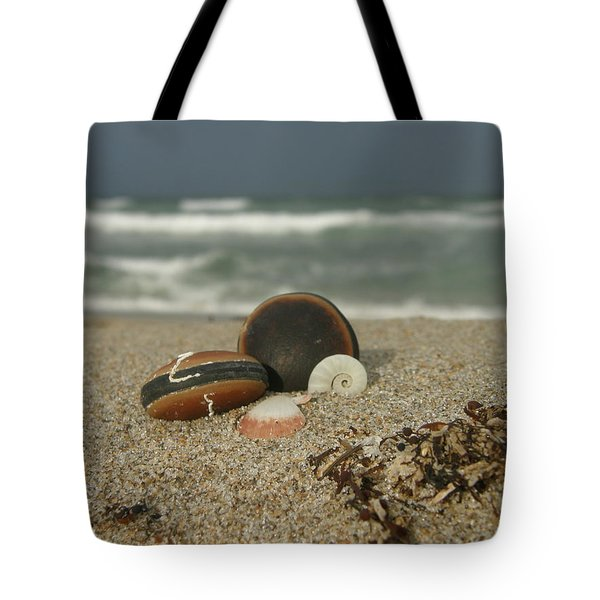Beach Treasures 1 Tote Bag by Kimberly Mohlenhoff