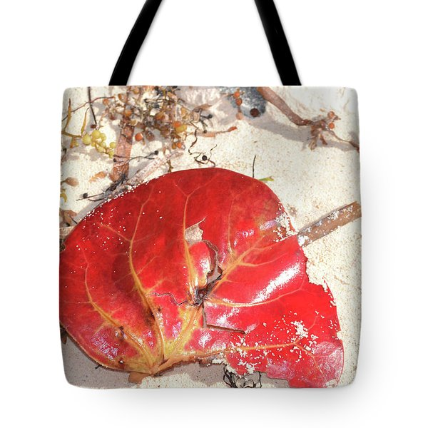 Beach Treasures 1 Tote Bag