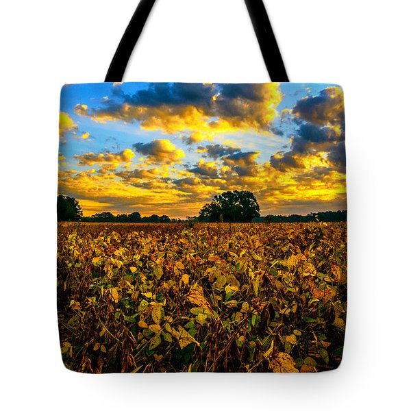 Bean Field Splendor  Tote Bag by John Harding