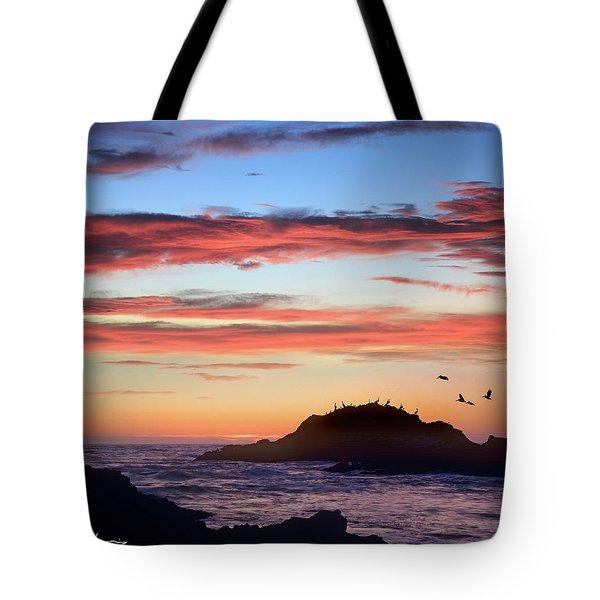 Bean Hollow Beach Tote Bag by Tim Fitzharris