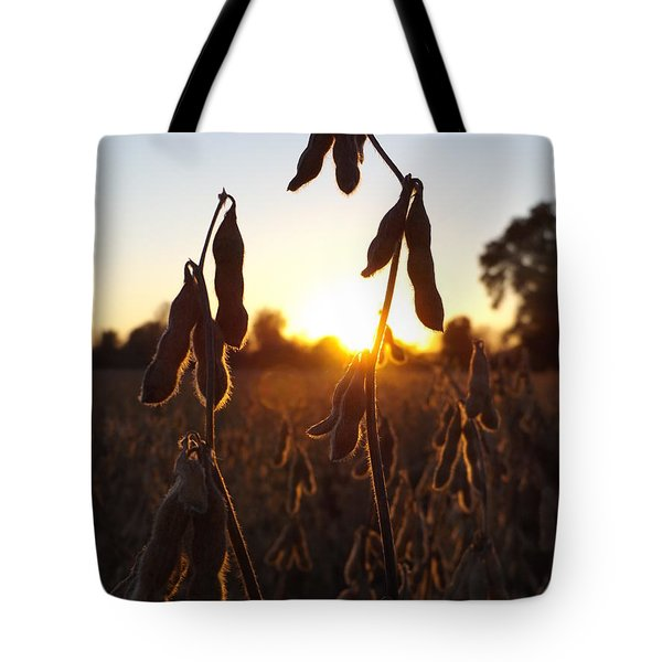 Beans At Sunset Tote Bag