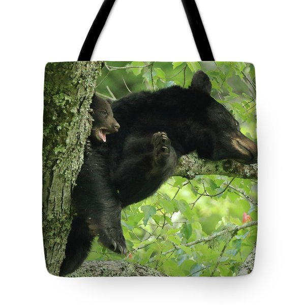 Tote Bag featuring the photograph Bear And Cub In Tree by Coby Cooper