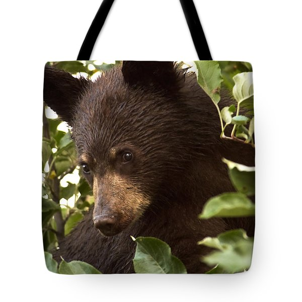Bear Cub In Apple Tree2 Tote Bag by Loni Collins