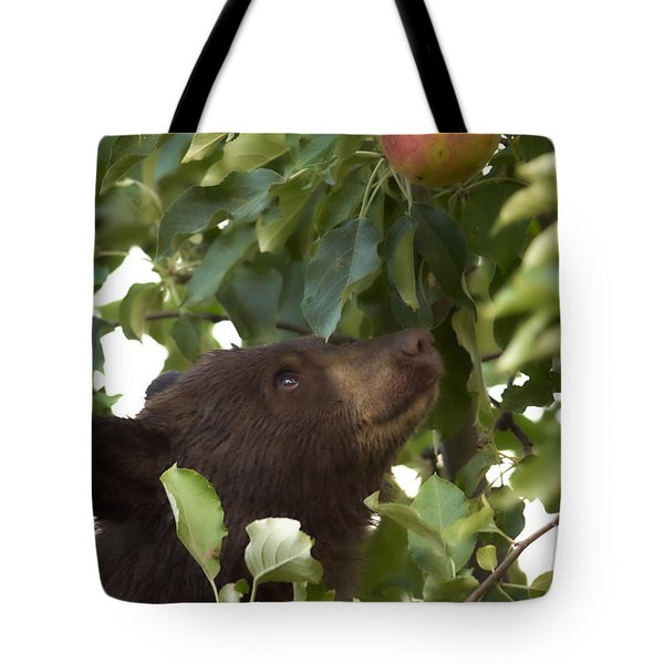 Bear Cub In Apple Tree4 Tote Bag by Loni Collins