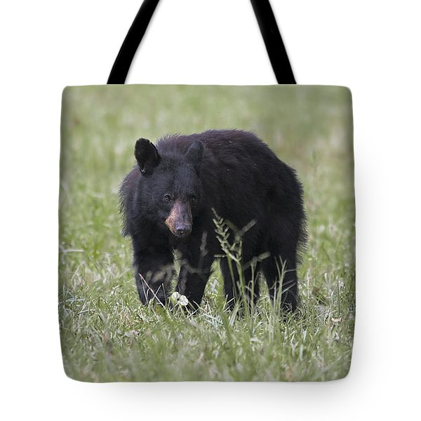 Bear Cub With Apple Tote Bag