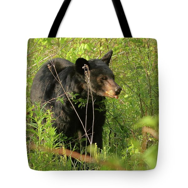 Tote Bag featuring the photograph Bear In The Grass by Coby Cooper