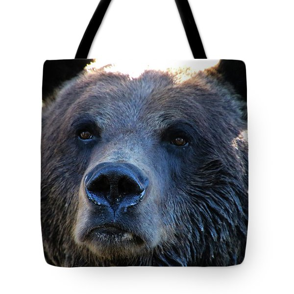 Bear On Grouse Tote Bag