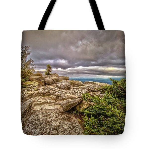 Bear Rocks Storm Tote Bag