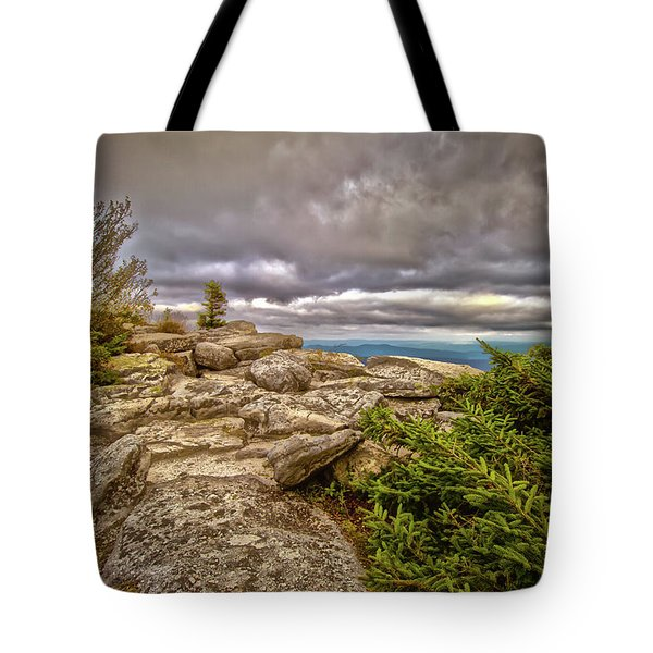 Bear Rocks Storm Tote Bag