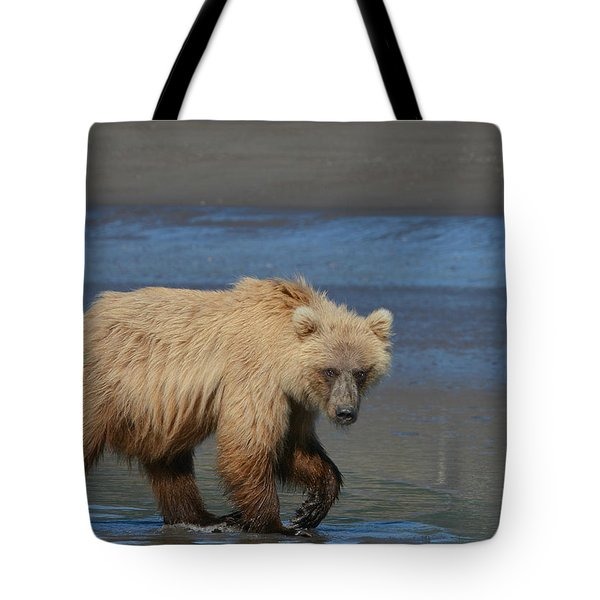 Bear Stare Tote Bag