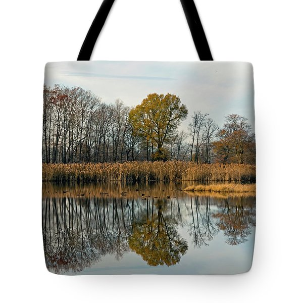 Bear Swamp Mirror Tote Bag by Jennifer Nelson