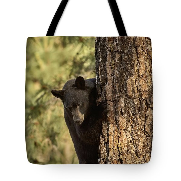 Bear3 Tote Bag by Loni Collins