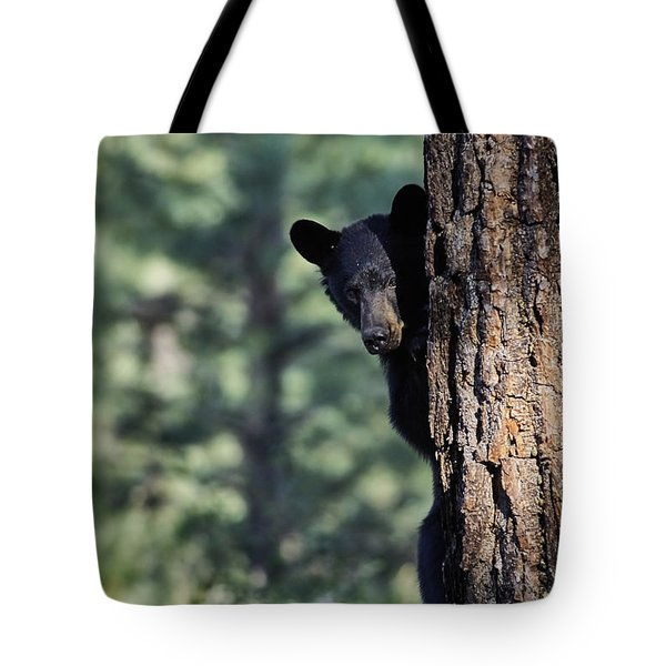 Bear4 Tote Bag by Loni Collins