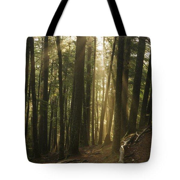Bearcamp River Trail - Sandwich Notch New Hampshire  Tote Bag