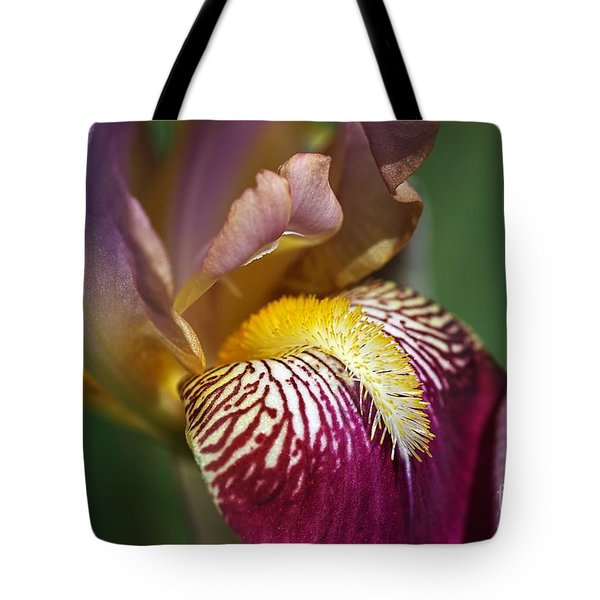 Bearded Iris Flower Mary Todd Tote Bag