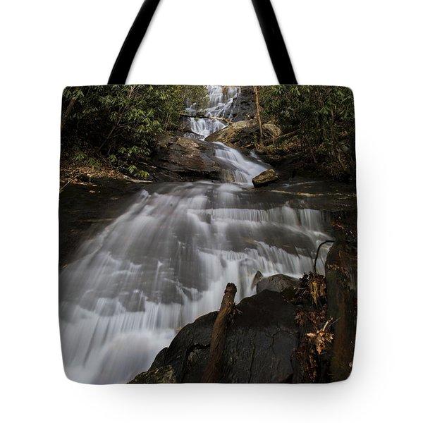 Bearden Falls Vertical Tote Bag by Barbara Bowen