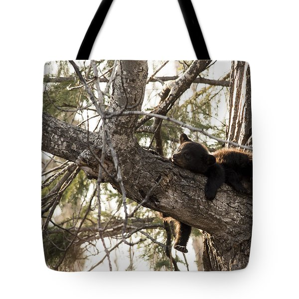 Bearly Hanging In There Tote Bag
