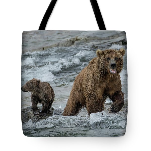 Tote Bag featuring the photograph Bears Being Watchful  by Cheryl Strahl