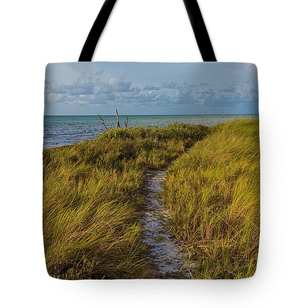 Beaten Path Tote Bag by Swank Photography