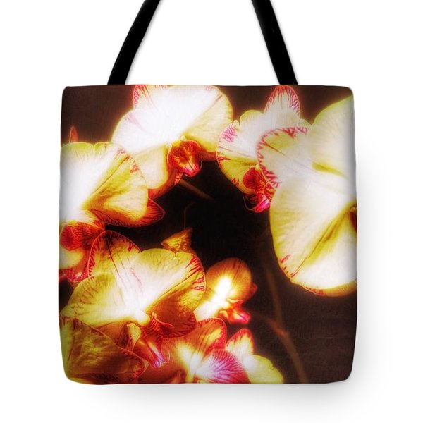 Tote Bag featuring the photograph Beautiful Orchid by Isabella F Abbie Shores FRSA