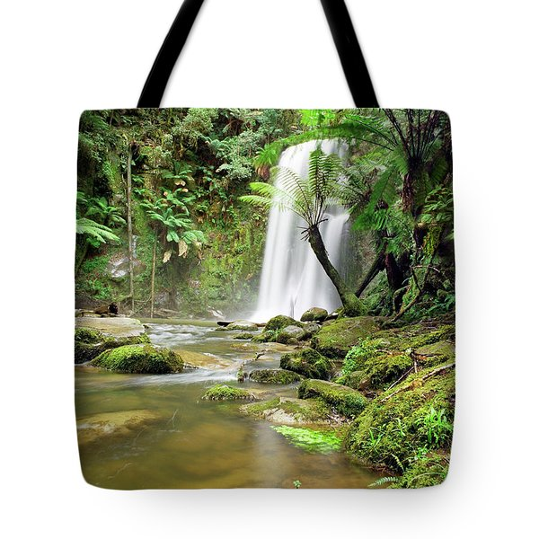 Beauchamp Falls Tote Bag