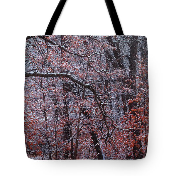 Tote Bag featuring the photograph Beautful Change by Kadek Susanto