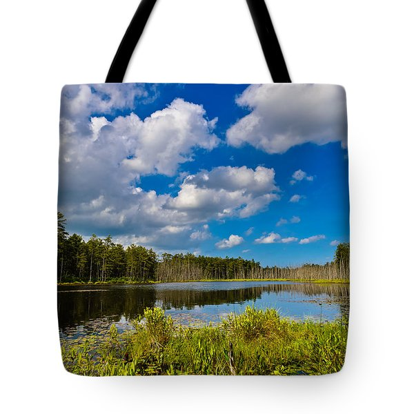 Tote Bag featuring the photograph Beautiful Afternoon In The Pine Lands by Louis Dallara