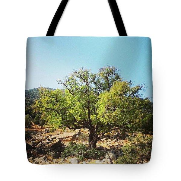 Argan Tree Tote Bag