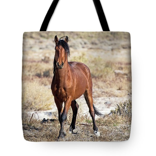 Tote Bag featuring the photograph Beautiful Bay by Lula Adams